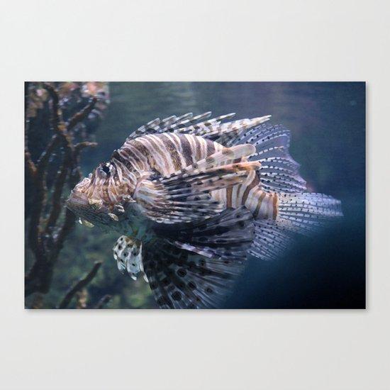 sea fish Canvas Print