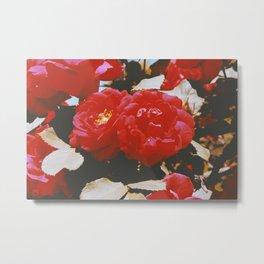 001 Nature Metal Print