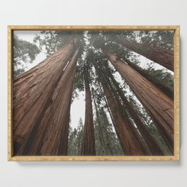 Sky Climbers - Sequoia Serving Tray
