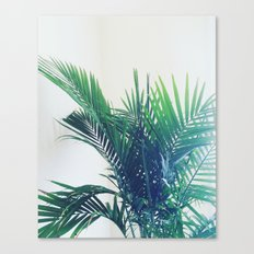 The Palm Canvas Print