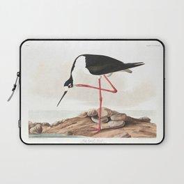 Long legged avocet, Birds of America, Audubon Plate 328 Laptop Sleeve