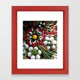 Thai Spices Framed Art Print