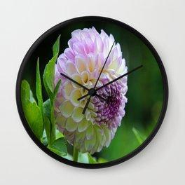 Lavender Eye Wall Clock