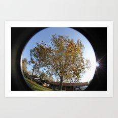 Sunny Trees Art Print