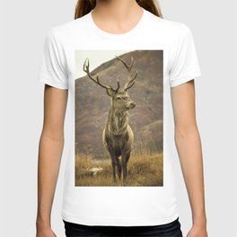 Red Deer Stag in Autumn T-shirt