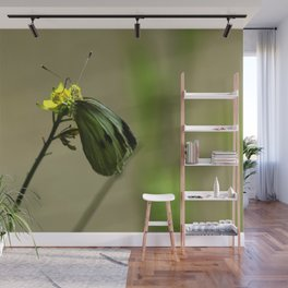 Green Winged Fairy Butterfly Wall Mural