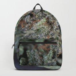 Master Kush Medical Marijuana Backpack