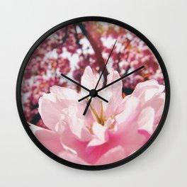Cherry blossoms sakura Wall Clock