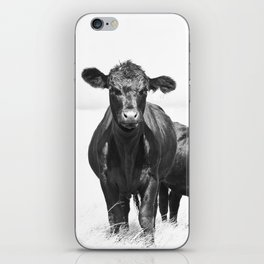 Cattle Country Photograph iPhone Skin