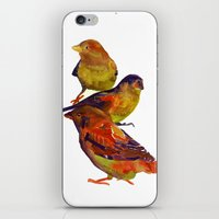 takmaj iPhone & iPod Skins featuring Sparrows by takmaj