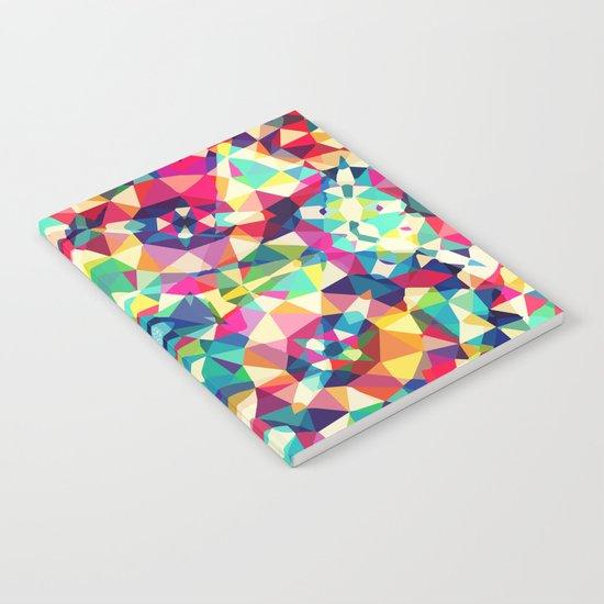Colour Of Joy Notebook