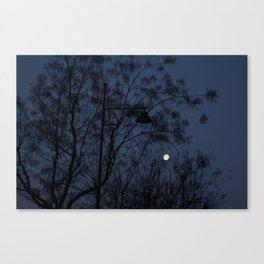 Escaped light Canvas Print