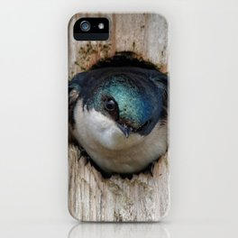 Meeting the New Nestbox Homeowner iPhone Case