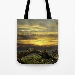 Oregon Coast - Golden Hour Tote Bag