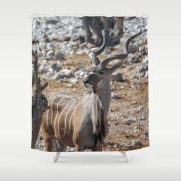 Kudu 2 Shower Curtain
