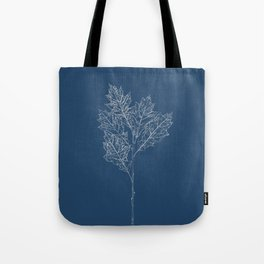 English Oak Blueprint Tote Bag