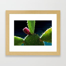 Cactus Needs A Hug Framed Art Print