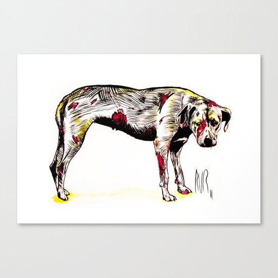 The sadness of streetdogs Canvas Print