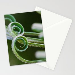 Palm frond spirals closeup Stationery Cards