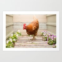 Almond the Wonderful Chicken Art Print