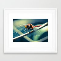 ruby Framed Art Prints featuring Ruby by Faded  Photos