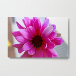 Pink/Purple Vibrance Metal Print