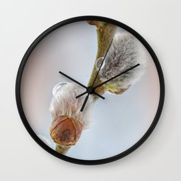 Pussy willow 069 Wall Clock