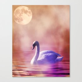 White Swan floating on a misty lake Canvas Print