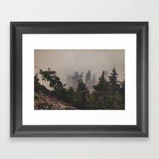 Mountaintop Forest Framed Art Print