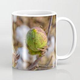 Cotton Boll Coffee Mug
