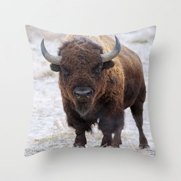 In The Presence Of Bison 2  Throw Pillow