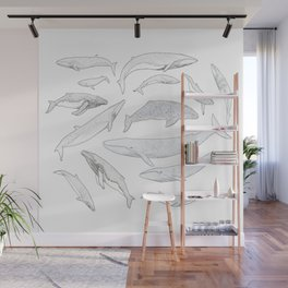 Whales of the world Wall Mural
