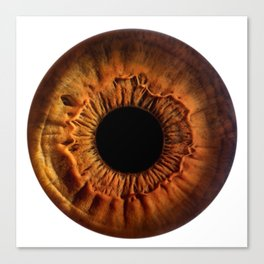 EYE Love to See You, Hazel Canvas Print