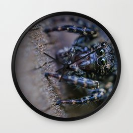 Tiny Dark Jumping Spider. Macro Photograph Wall Clock