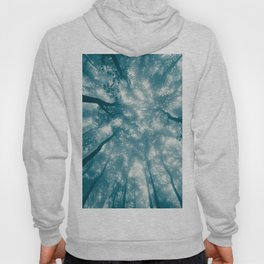 Smoky Mountain Summer Forest Teal - National Park Nature Photography Hoody