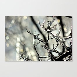 Ice Storm Canvas Print