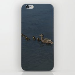 Duck Family iPhone Skin