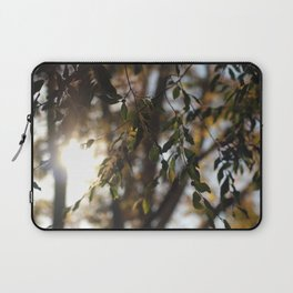 Leaves and Light Laptop Sleeve