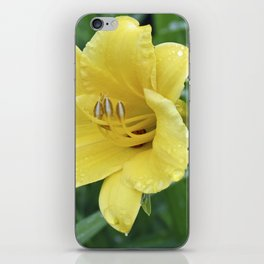 Day Lily iPhone Skin