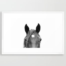 Peeking Horse Framed Art Print