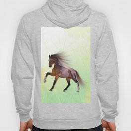 A horse, a friend Hoody