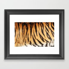 tiger stripes Framed Art Print