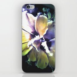 Sun Rays On The Hibiscus Flower iPhone Skin