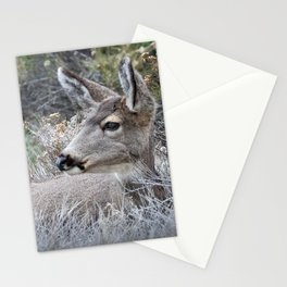 Mule Deer resting in the shrubs - Bryce Canyon National Park Stationery Cards