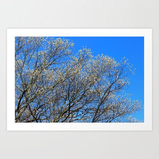 Spring to Life Art Print