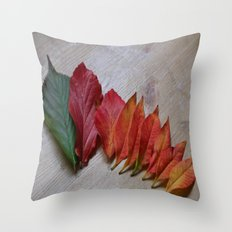 Color Transition Throw Pillow