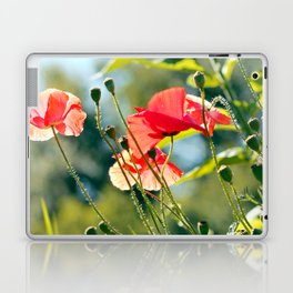 Backlit poppies Laptop & iPad Skin