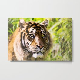 Malayan Tiger | Watercolor Painting Metal Print