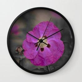 Dream Of Cistus Rock Rose Wall Clock
