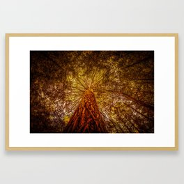 The Tree of Life in New Zealand Framed Art Print
